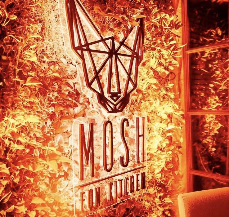 MOSH FUN KITCHEN